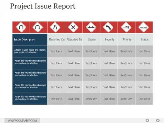 Project Issue Report Ppt PowerPoint Presentation Topics - PowerPoint