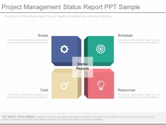 Project Management Status Report Ppt Sample - PowerPoint Templates