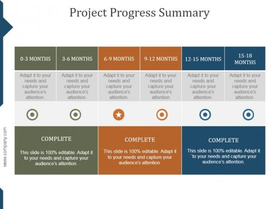 Project Progress Summary Ppt PowerPoint Presentation Infographic