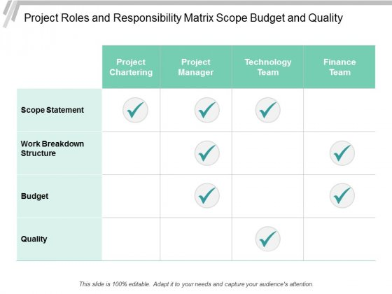 Project Roles And Responsibility Matrix Scope Budget And Quality Ppt