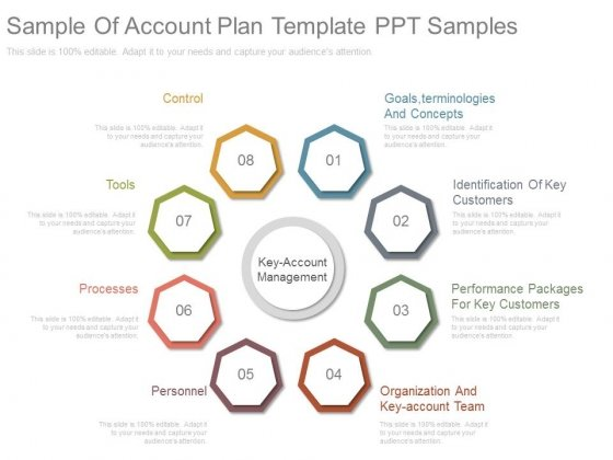 Sample Of Account Plan Template Ppt Samples - PowerPoint Templates
