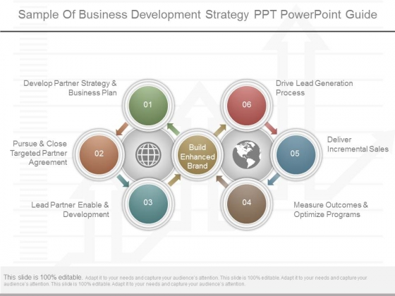 Sample Of Business Development Strategy Ppt Powerpoint Guide