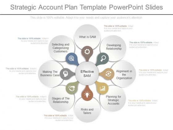 Strategic Account Plan Template Powerpoint Slides - PowerPoint Templates