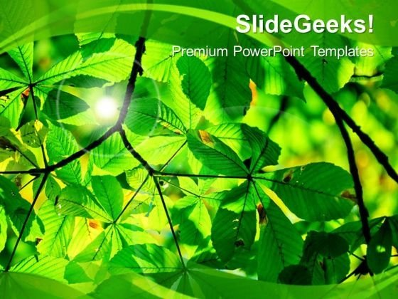 Environment PowerPoint templates, backgrounds Presentation slides