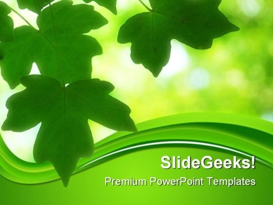 Green leaves PowerPoint templates, Slides and Graphics