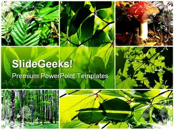 Green Summer Forest Collage Nature PowerPoint Themes And PowerPoint