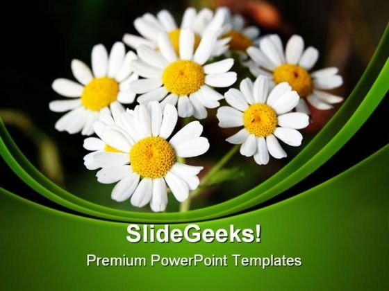 Summer PowerPoint templates, Slides and Graphics - summer powerpoint template