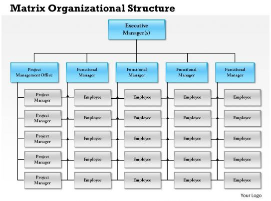 Case Studies In Organizational Communication Perspectives 0514 Matrix Organizational Structure Powerpoint