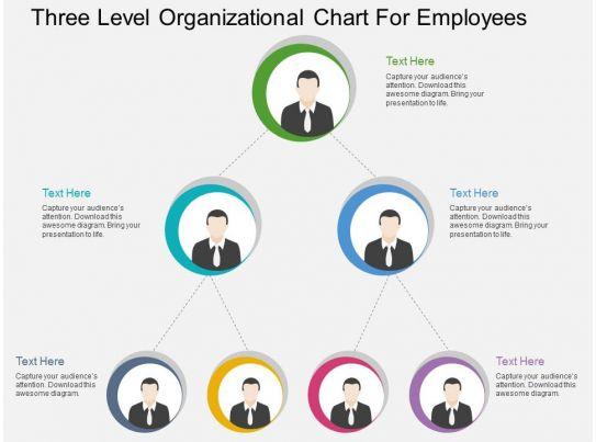 org chart design - Selol-ink