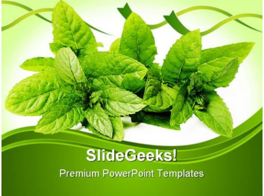 Green Mint Leaves Nature PowerPoint Templates And PowerPoint