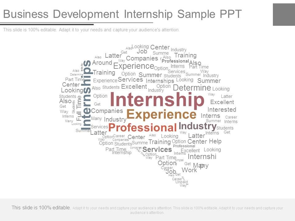 Business Development Internship Sample Ppt Template Presentation