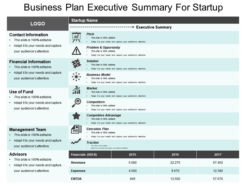 Business Plan Executive Summary For Startup Sample Of Ppt Template