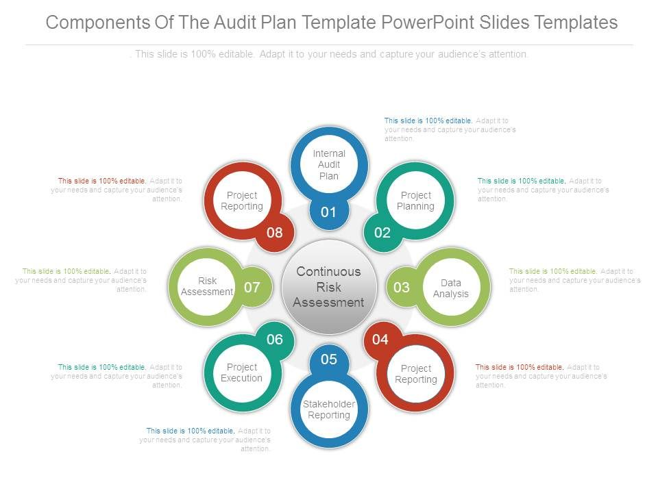Components Of The Audit Plan Template Powerpoint Slides Templates - audit plan template
