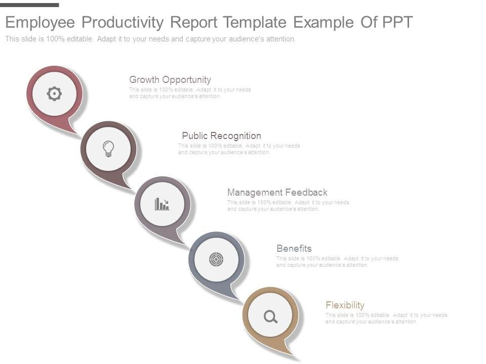 Employee Productivity Report Template Example Of Ppt PowerPoint - Employee Presentations