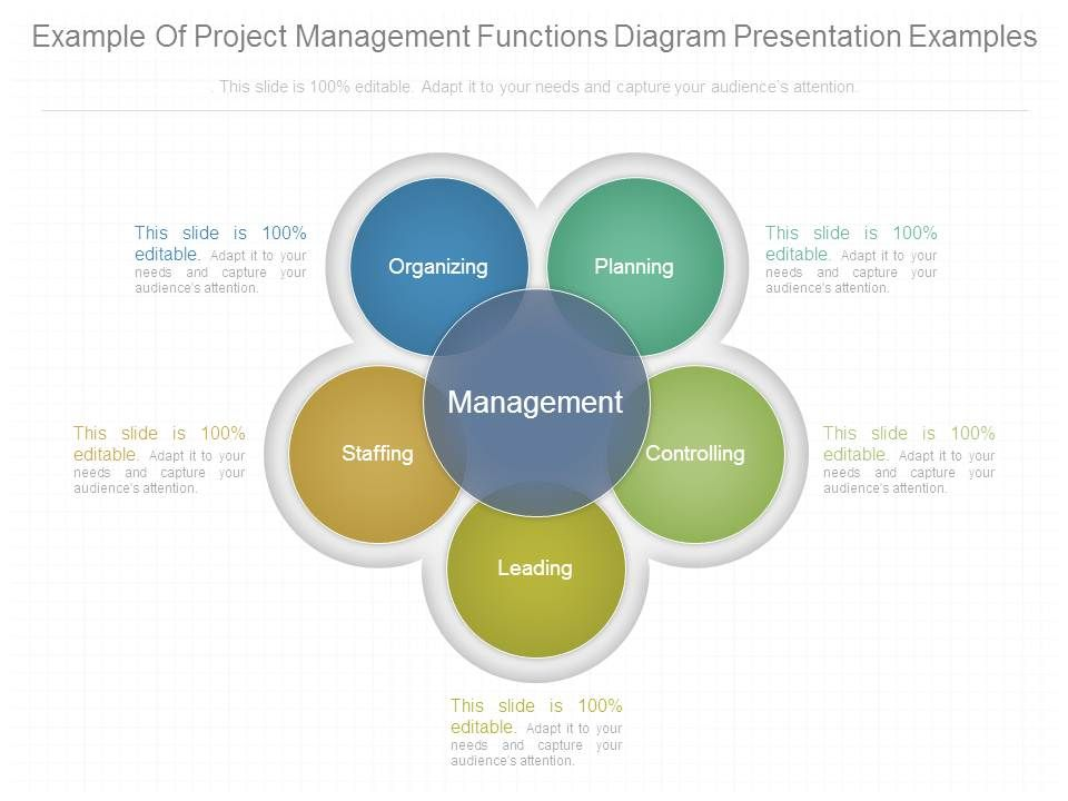 project management experience examples xv-gimnazija