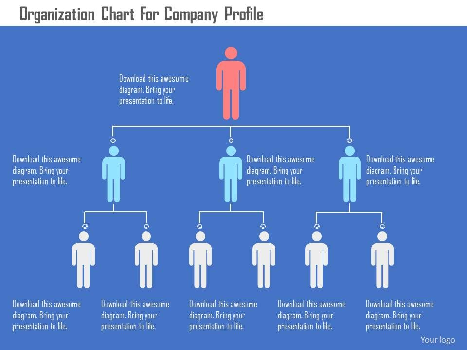 Organization Chart For Company Profile Flat Powerpoint Design - company profile sample download