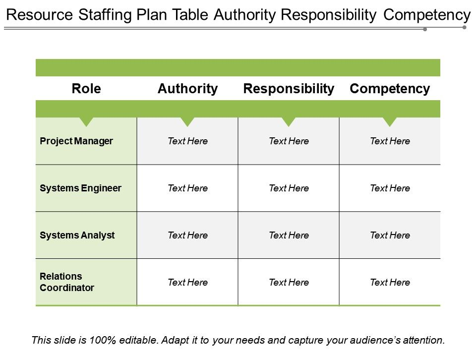 Resource Staffing Plan Table Authority Responsibility Competency