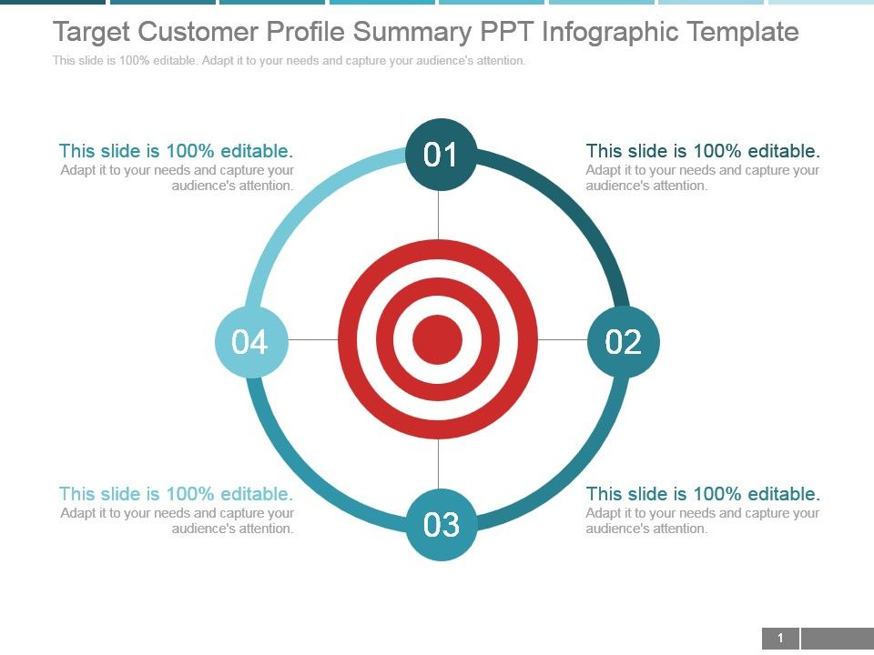 Target Customer Profile Summary Ppt Infographic Template - customer profile