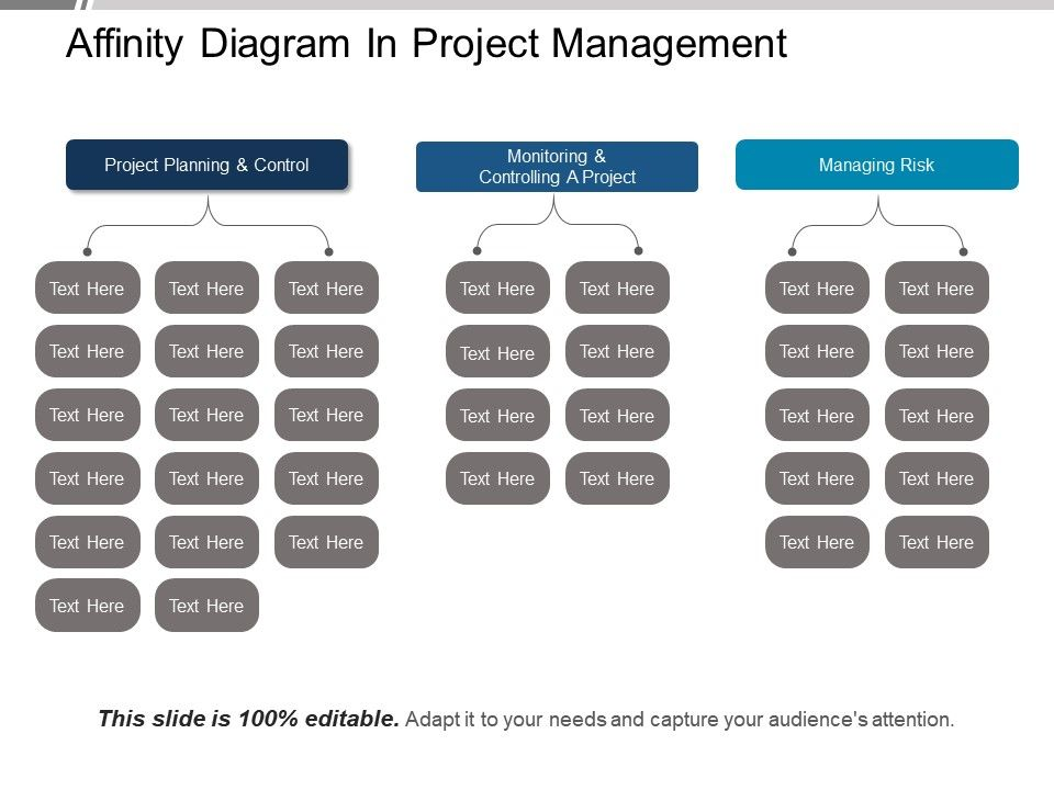 Affinity Diagram In Project Management Ppt Example File PowerPoint