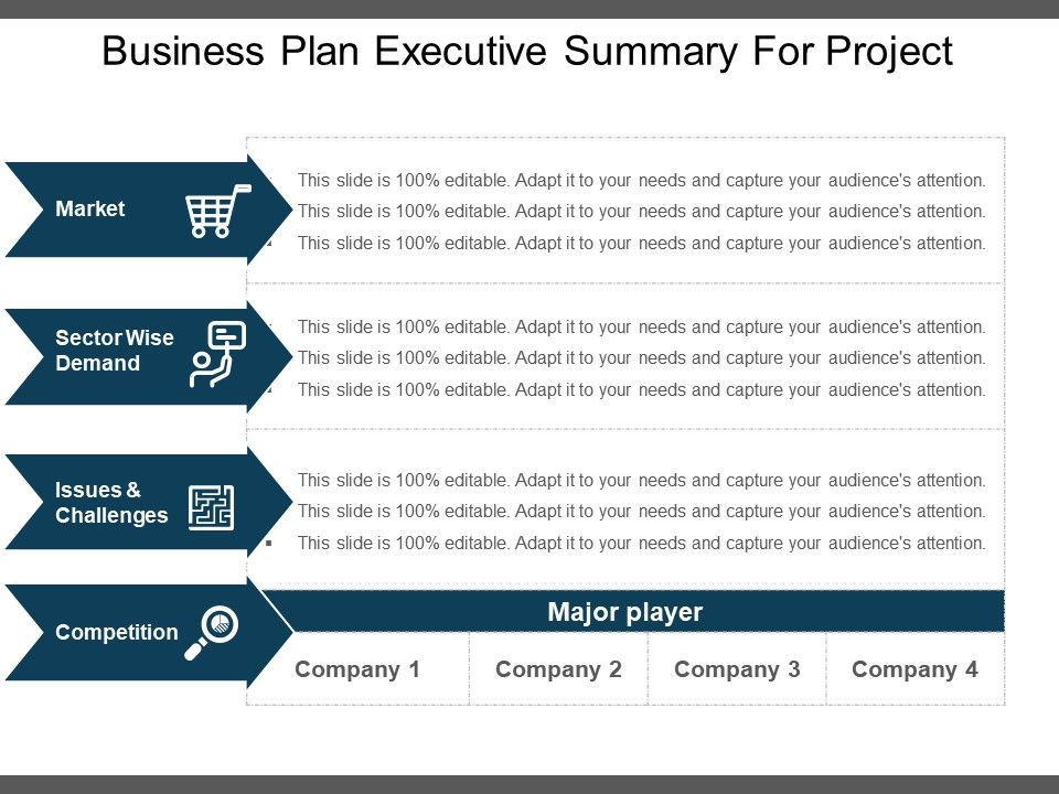 Business Plan Executive Summary For Project Example Of Ppt