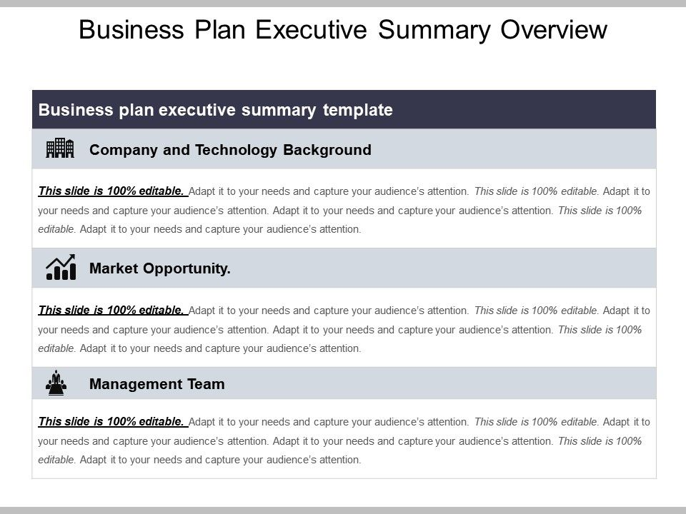 Business Plan Executive Summary Overview Powerpoint Graphics