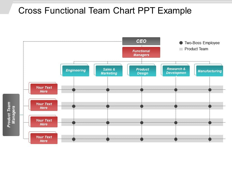 Cross Functional Team Chart Ppt Example PowerPoint Slide Templates
