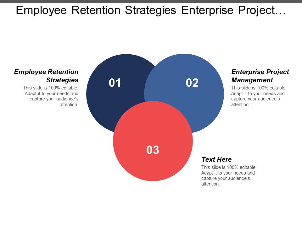 Employee Retention Strategies Enterprise Project Management Tool