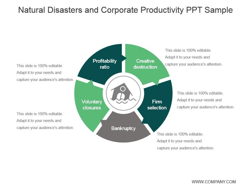 Natural Disasters And Corporate Productivity Ppt Sample PowerPoint