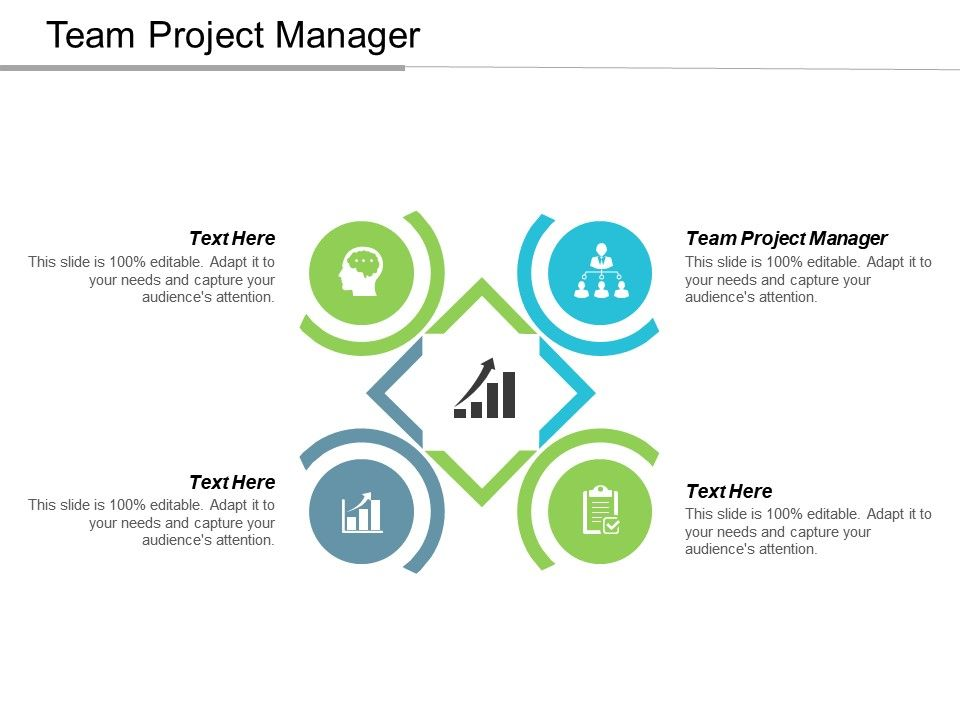 Team Project Manager Ppt Powerpoint Presentation Gallery Background