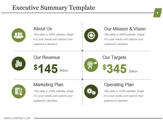 one page executive summary template wtfhyd - one page executive summary template