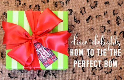 Dixie Delights How To Tie The Perfect Bow