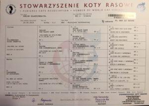 Rodowód KHLOE KLAUDYNKA .PL
