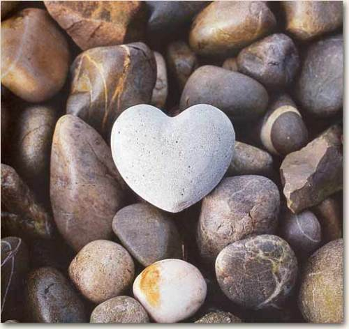 Image result for hearts in nature