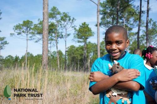 National_Park_Trust_Buddy_Bison_1