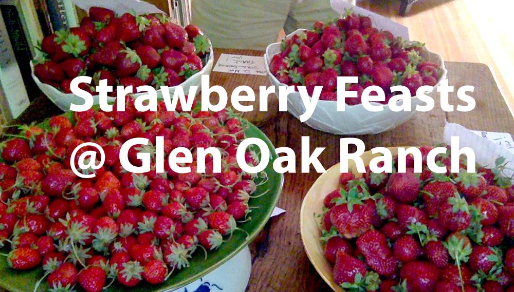 Strawberry Feasts @ Gen Oak Ranch