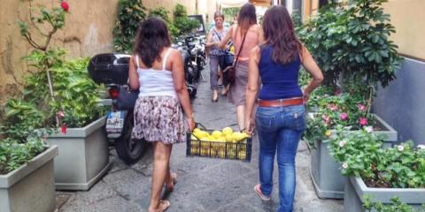 limoni_sorrento_turisti