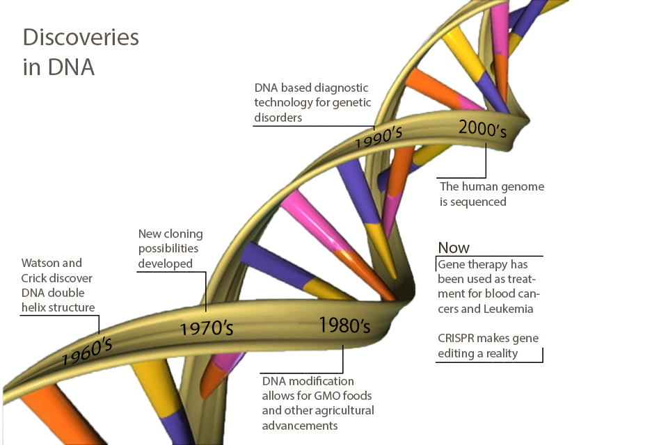 genetic essay discoveries in dna what s new since you went to high