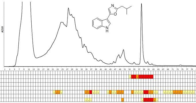 Secondary metabolites Externwebben