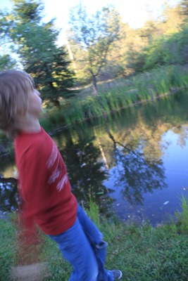 throwing rocks in the pond