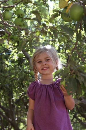 Riley's Farm apple picking
