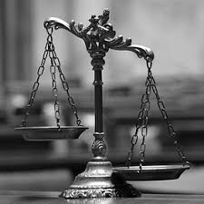 13. Expert witness services