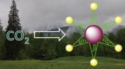 Single step process transforms carbon dioxide into star-shaped molecules