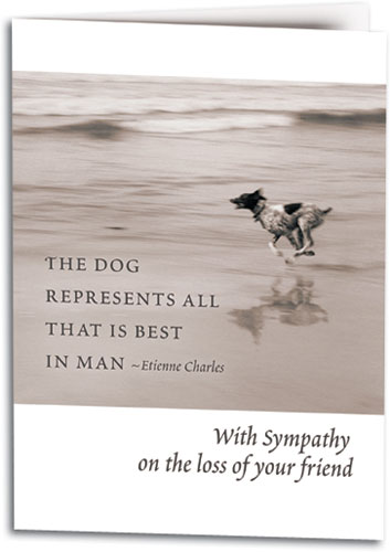 Sympathy Cards Show Compassion for the Loss of a Pet SmartPractice