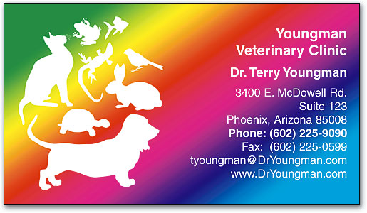 Standard Business Cards SmartPractice Veterinary