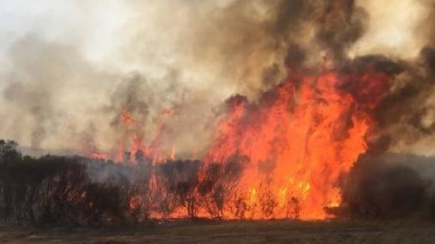 At least four people are dead and 300 more have been evacuated after bushfires continue to burn out of control in North Cascade, Merivale and Cape Arid National Park in the Esperance Shire.