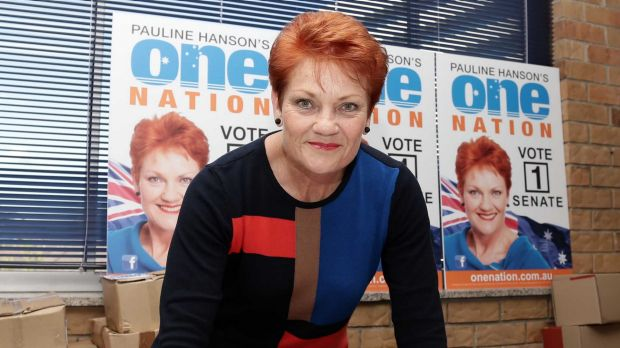 Pauline Hanson was labelled a 'racist redneck' by an Indigenous leader when she attended an art fair in Cairns.