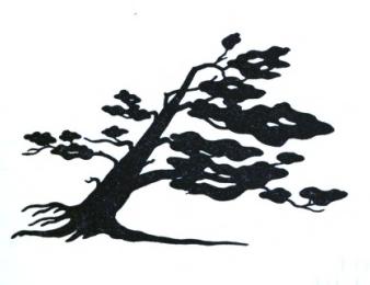 davies lake tree