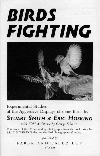 birds fighting cover