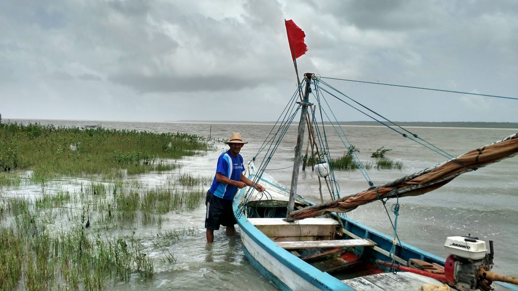 Finding The Shorebird Hotspots Of Northern Brazil Joseph Smith - Us to brazil by boat map