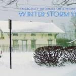 winter Storm Stella